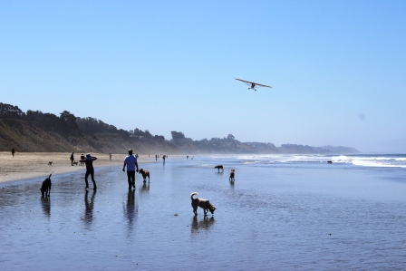 Aptos_Tincan_beach_3_people_dogs_planes_web